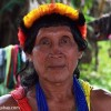 What the People of the Amazon Know That You Don't — A TED Talk by Ethnobotanist Mark Plotkin